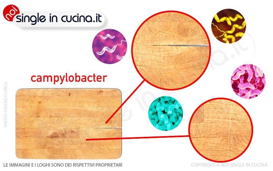 pericolo germi campylobacter