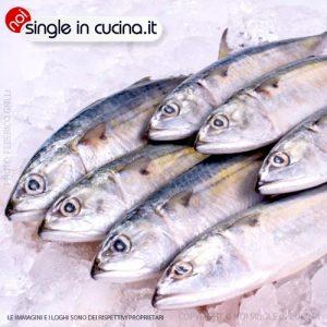 pesce-ghiacciato